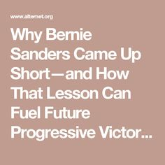 Why Bernie Sanders Came Up Short—and How That Lesson Can Fuel Future Progressive Victories | Alternet