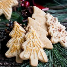 Rustic Caramel Iced Brown Sugar Cookies, baked with crunchy raw sugar topping or drizzled w/ icing and sparkles or toasted pecans.