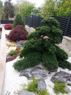 Japanese Garden Theme For A Getaway In Your Own Backyard Small Japanese Garden, Japanese Garden Design, Garden Yard Ideas, Garden Theme, Outdoor Plants, Outdoor Gardens, Serenity Garden, Rock Garden Design, Japan Garden