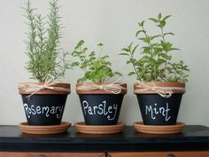 Paint some terra cotta with chalkboard paint for a super cute labeled container herb garden.