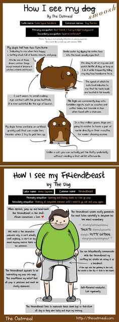 A hilarious and heartwarming cartoon by The Oatmeal. How I see my dog vs. how my dog sees me.