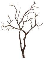 Artificial Brown Branch QSW016-BR.jpg