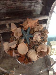 Shells Portugal, Shells, Stuffed Mushrooms, Vegetables, Food, Conch Shells, Stuff Mushrooms, Seashells, Essen