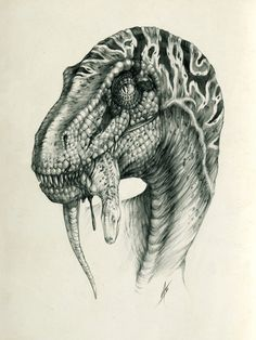 """press """"Download"""" please some raptor's sketches in one place"""