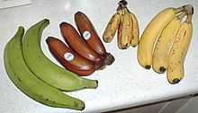 Banana - Wikipedia