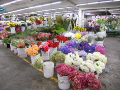 Los Angeles Flower Market. DIY wedding bouquets and centerpieces #orchids #roses white cream elegance