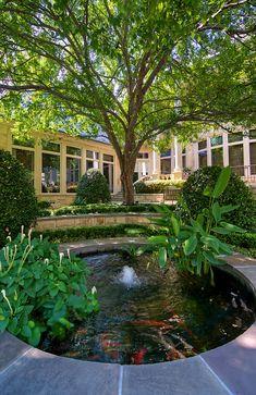 Wonderful garden pond~
