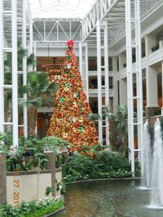 Gaylord Opryland Hotel in Nashville Tn 2011