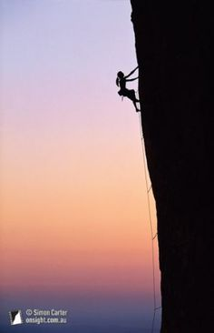 """""""In order to become fearless you have to stand in the middle of your fear""""   Larry Rosenberg"""