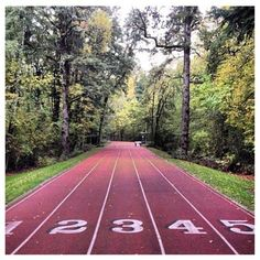 Running track into the Forest - Nike Headquarters