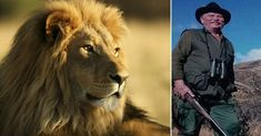 Croatian Trophy Hunter Killed Just as He Was About to Shoot Lion