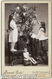 Ritratto di bambini intenti a decorare l'albero di Natale, sul recto l'indicazione che la fotografia  � stata realizzata nello studio di Bernardo Pasta (Successore di Ambrosetti), sul verso il marchio dello Studio, Via XX Settembre, 3 Via Volta, 4 Torino,