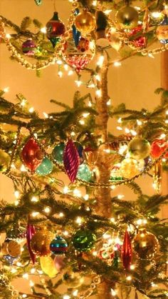 Get out the clippers and don't be shy. Making an it-grew-in-the-forest-christmas-tree from a cone-shaped and sheared boring tree. An Urban Cottage: The Tree