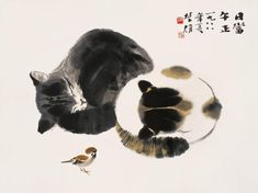 Two sleeping cats and a sparrow.