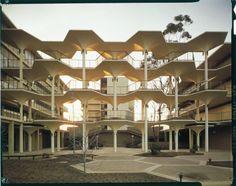 UCSD_The Breezeway, Revelle College © Darren Bradley