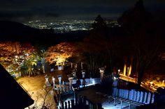 大山阿夫利神社からの夜景 Night View from Afuri-jinja Shrine / 大山寺&大山阿夫利神社の紅葉 Autumn leaves in Oyamadera Temple and Afuri-jinja Shrine,Kanagawa,Japan