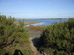 Chichester Harbour. Portsmouth Harbour, West Wittering, Chichester, Nature Reserve, Geology, Habitats, Seaside, England, Country Roads