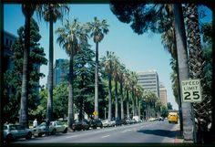 Sacramento, California #Sacramento #California