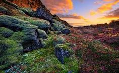 Read our 11 top tips for your travel to Iceland. Find out the best places to go and things to do to make your holiday incredible. Read on for more. Guide To Iceland, Iceland Travel Tips, Beautiful World, Beautiful Places, Amazing Places, Beautiful Scenery, Beautiful Landscapes, Tour Bus, Thingvellir National Park