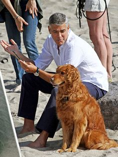 GEORGE CLOONEY...cute dogs are always an attention getter for men!
