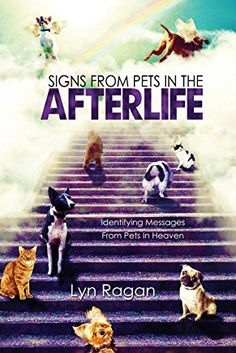 Read Lyn Ragan's book Signs From Pets In The Afterlife: Identifying Messages From Pets In Heaven. Published on by Lyn Ragan. Encouraging Bible Verses, Bible Encouragement, Good Books, Books To Read, Amazing Books, Read Sign, After Life, Pet Loss, Rainbow Bridge