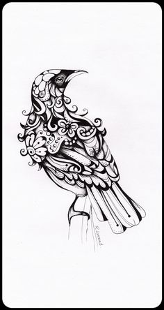 Inked Tui Illustration | Robyn Lamont | New Zealand Artist