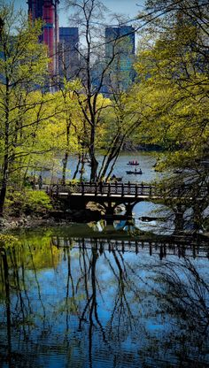 Like the reflections of the bridge and trees in this shot - Central Park, NYC