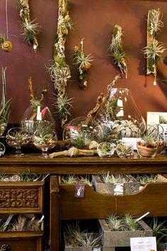 Serenity in San Francisco: Utsuwa Floral Design -