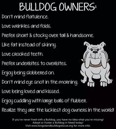 So true! These are real requirements. My puppy is highly flatulent!