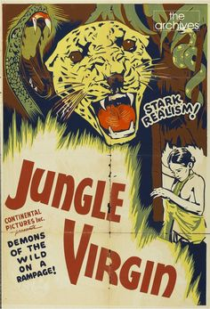 """Poster of 'Jaws of the Jungle', (Jungle Virgin in the US) shot in Ceylon in 1935. The 60 mts movie directed by Eddie Granemann & was produced by Jay-Dee-Kay Productions. The Plot was about a village and the attempt by its inhabitants to cope with """"swarms of vicious vampire bats"""" as they make a dangerous journey to obtain a blessing for a marriage between two villagers. Complications develop when the bride's former suitor's jealousy results in him attacking the groom."""