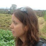 Danielle Nierenberg, co-founder, FoodTank, on Instagram