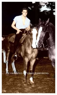 Elvis with his horses, he loved riding I think it was the sense of power and freedom (colorized photo)