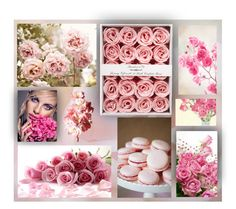Pink roses by zdenicka on Polyvore featuring art