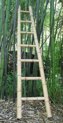 Bamboo Ladder Various Heights