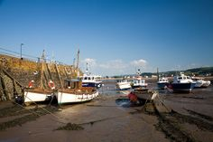 Minehead Harbour (somersetguide.co.uk)