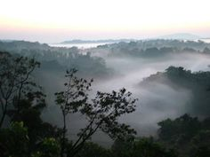 Best Places to Visit in Coorg: List of places to visit in Coorg  Kodagu is one of...