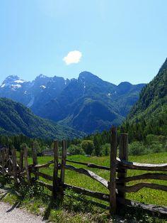 Pastoral Scene, Triglav National Park, Slovenia