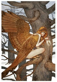Harpy Illustrations by Florida-based artist Erin Kelso, aka Bluefooted. Inspired by mythology and literature, Erin created characters from Harry Potter and Lord of the Rings. Alice and the gryphon color Wild thing The wolfman Papagena … Continue Reading → Art And Illustration, Fairy Tale Illustrations, Magical Creatures, Fantasy Creatures, Fairytale Creatures, Greek Mythical Creatures, Dark Fantasy, Fantasy Art, Fairytale Art