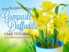 Gumpaste Daffodil Tutorial - Spring Flowers - Cake Central by Shailes' Edible Art. www.shailesedibleart.blogspot.com