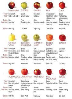 get edu on apples