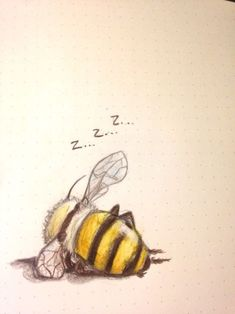 "schinkennudeln: ""Also my last drawing . schinkennudeln: ""Also my last drawing of 2016 was a bee taking a nap "" Bee Art, Art Et Illustration, Bumble Bee Illustration, Animal Illustrations, Inspiration Art, Creative Inspiration, Bees Knees, Oeuvre D'art, Designs To Draw"