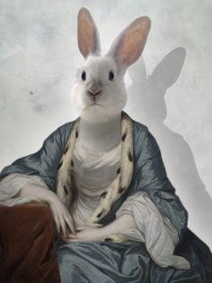 Constance - Photographie,  30x40 cm ©2014 par Philippe TYBERGHIEN -                                            Papier, Animaux, Photographie, Photographies couleur, portrait animalier, portrait, costume, habit