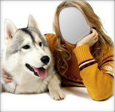 Beauty With Husky