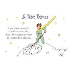 Carte postale Le Petit Prince - La toilette de la planète