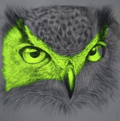 My Owl Barn: Louise McNaught: Fluorescent Mixed Media Animals