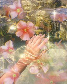Soft nature aesthetic wallpaper ideas Source by benarieb Nature Aesthetic, Flower Aesthetic, Aesthetic Vintage, Summer Aesthetic, Lush Aesthetic, Aesthetic Colors, Aesthetic Fashion, Foto Fantasy, Pink Lila