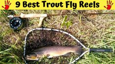 9 Best Trout Fly Reels 2020 [Trout Special & Why] Best Fishing Reels, Fly Reels, Spinning Reels, Going Fishing, Fishing Tips, Trout Fishing, Fly Fishing, Best Trout Flies, Rod And Reel