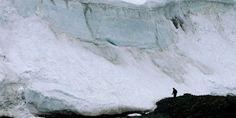 Naturaleza y Voluntariado Ambiental: La Antártida almacenó grandes cantidades de CO2 du...