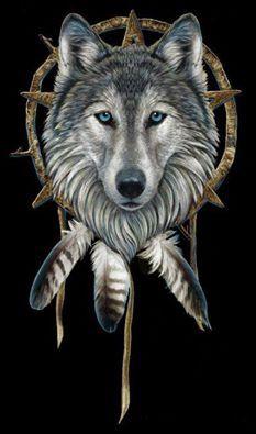 #Wolf #dreamcatcher