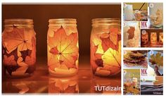 Blade på glas